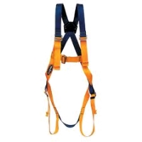 Where to rent BELT BODYHARNESS FOR LIFT in Upper Tumon GU